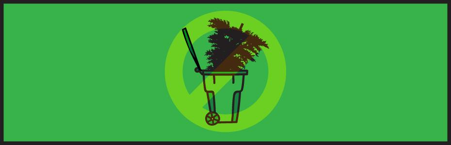 Όχι άλλα δέντρα στα σκουπίδια!